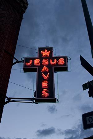 Neon - Steve Lewis